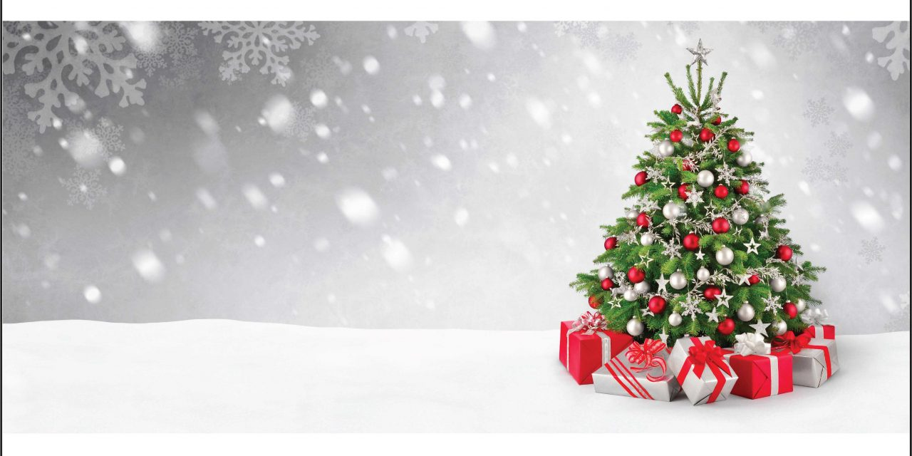 Happy Christmas from our Dansensor Team.